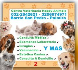 ⭐ palmira, centro veterinario, happy animals, perros, gatos, mascotas,