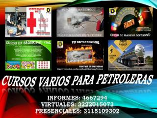 Curso virtual sustancias peligrosas