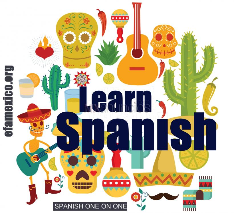 SPANISH LESSONS – 1 on 1 – SKYPE - NATIVE TEACHER