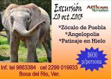 Excursion Africam Safari partiendo de Veracruz 20 oct 2013