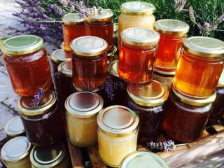 99 types of the World Finest Honey Under One Roof