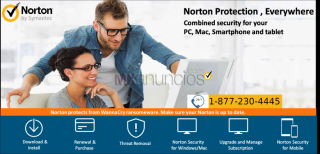 Official   norton customer service number