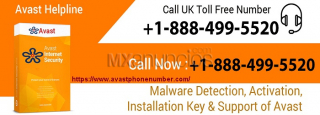Avast Support Number