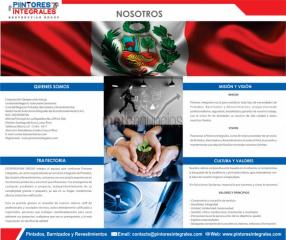 Pintores Integrales