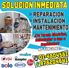 100%profesionales thermas a gas -electrica